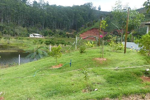 Localização do Viveiro Mata Verde