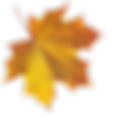 autumn_leaves_PNG3594.png