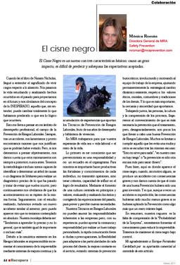 cisne negro (1).jpg