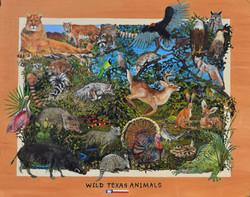 WILD TEXAS ANIMALS