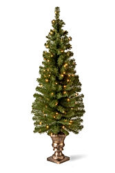 National Tree 5 Foot Montclair Spruce Entrance Tree with 100 Clear Lights
