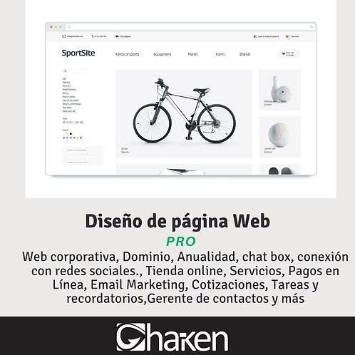 Página Web PRO
