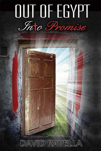 OUT OF EGYPT Into Promise EBOOK