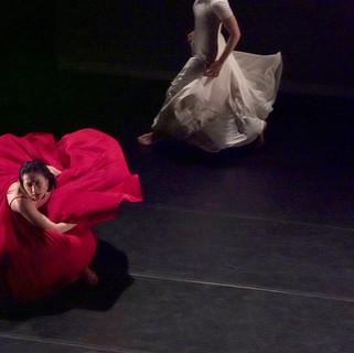 歌劇院沙龍《平珩說舞》文學與舞蹈