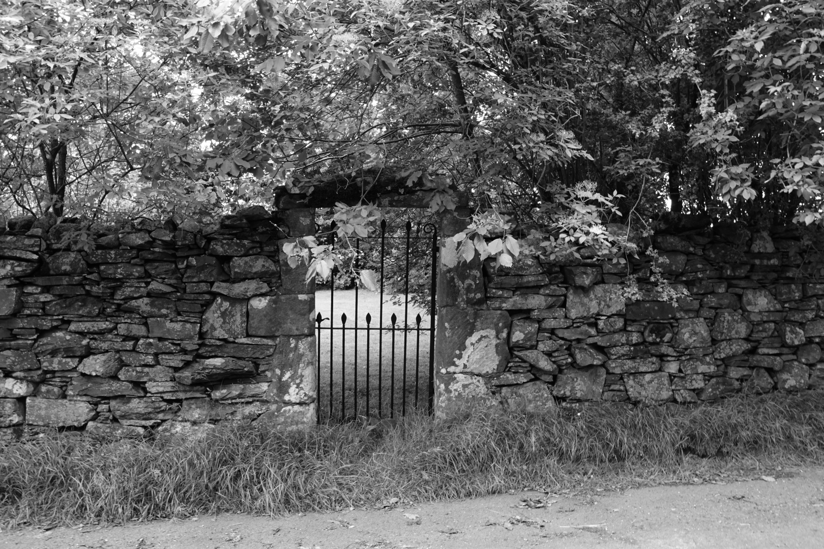 Garden Gate, Mosedale_Tim Parmley