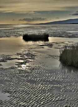Gilly Linton_Powfoot Beach