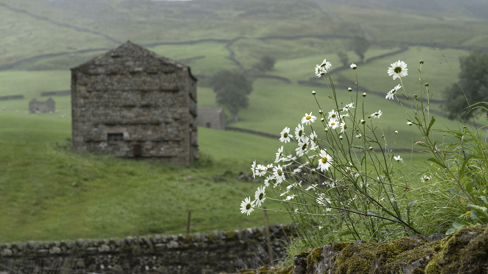 2791_Dales Barns_Richard Speirs