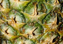 8024_Pineapple Patterns_Catherine White.