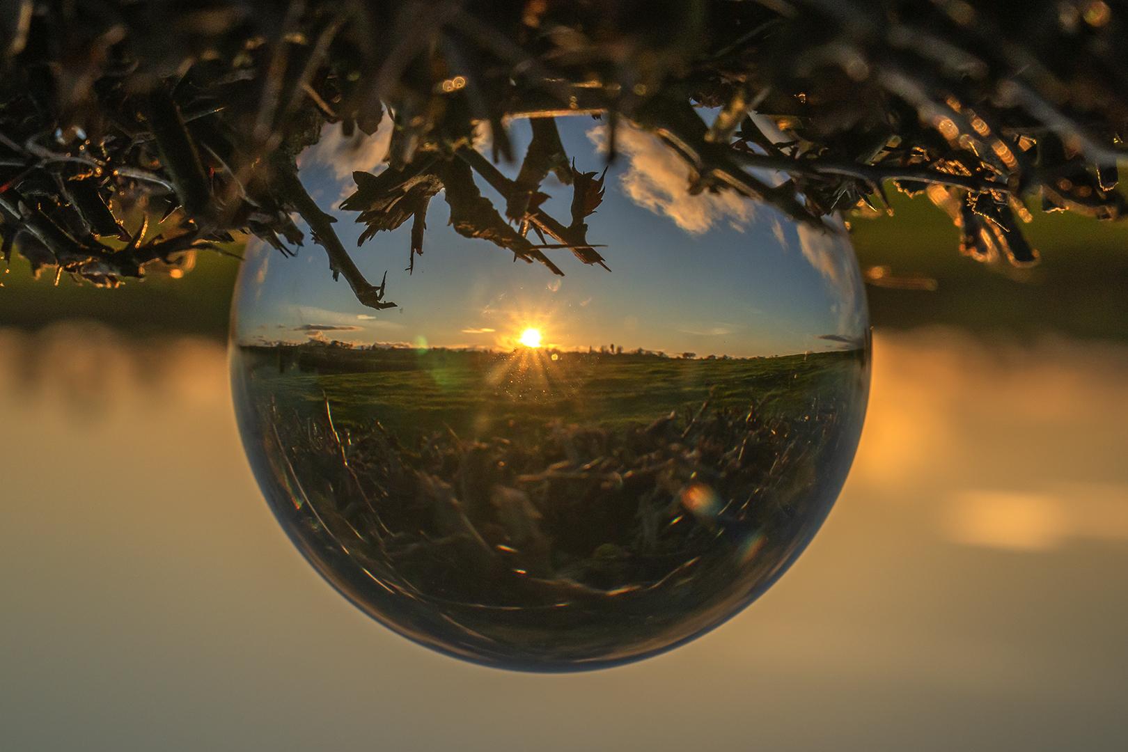 Global Sun_Ian Gregory