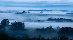3650_Misty Morning Blues_Helen Harkness.