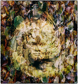 Face in the Leafs_Gerald Chamberlin