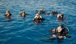Donald McCutcheon_Diving In Malta