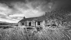 Fred Bell_Abandoned