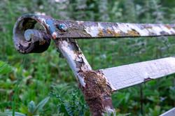 Rusty Bench_Phillip White