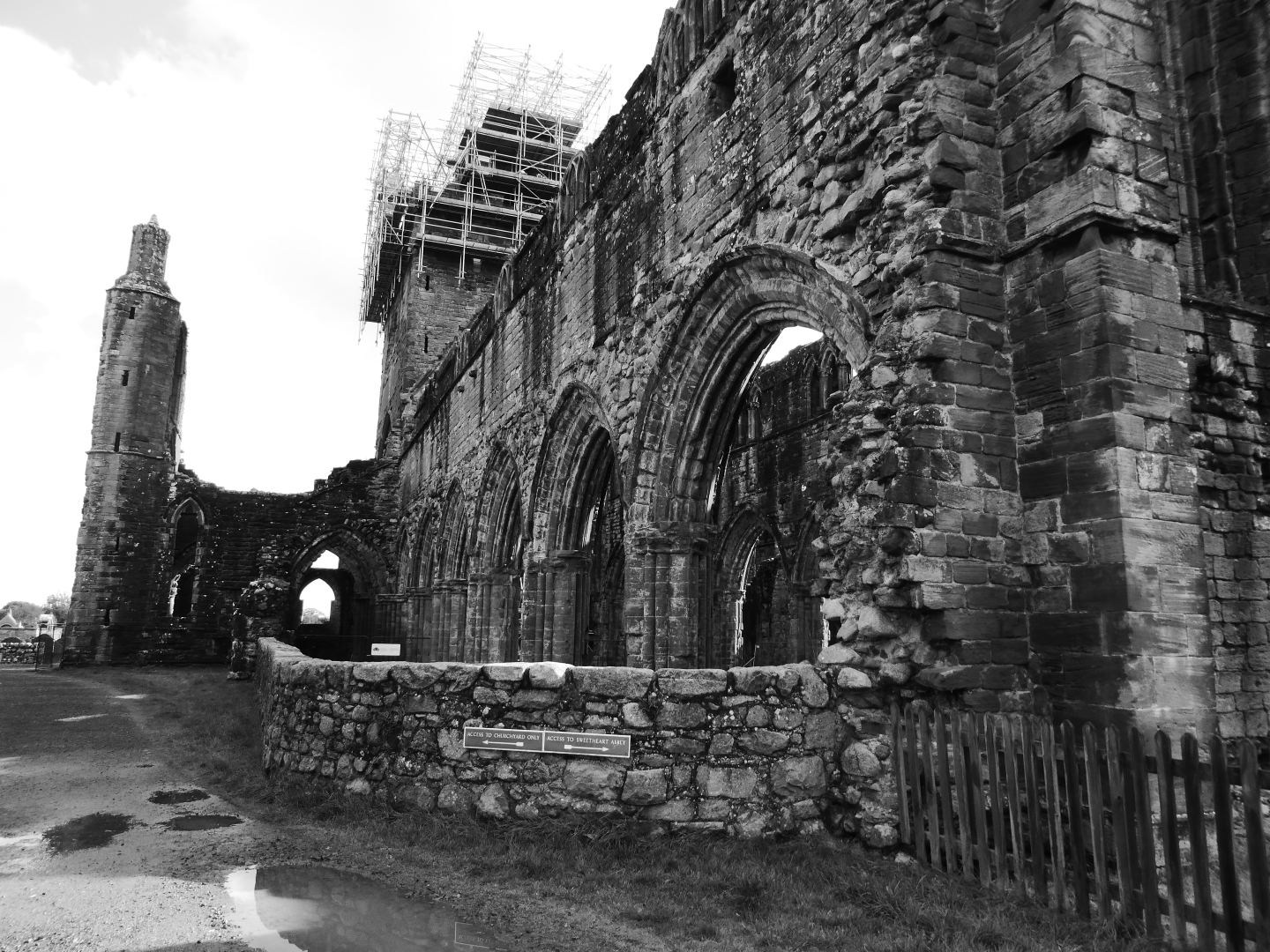 Gilly Linton_Sweetheart Abbey