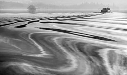 Windermere Wave