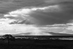 2355_Shower Over Criffel_Paul Nettleton.