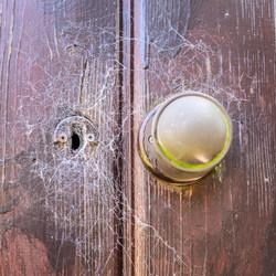 Shed Door_Phillip White