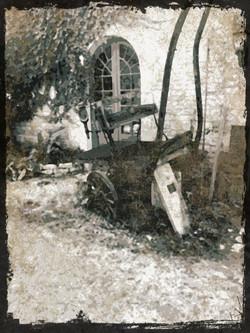 The cart_Martin Riley
