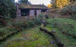 Open House_Ian Gregory