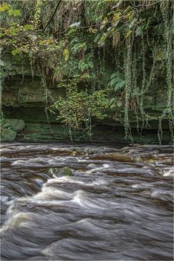 3966_River Gelt_Nigel Stanley