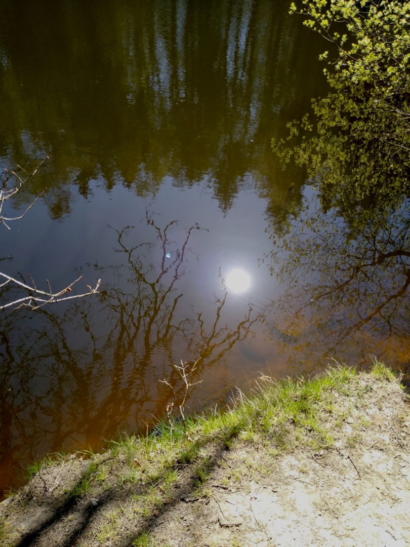 Reflected sun_Tim Parmley