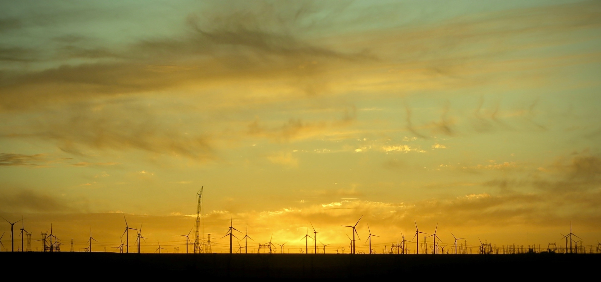 6403_Wind Farm_Steve Jeffrey