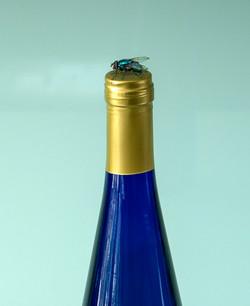 Blue Bottles_Ian Gregory