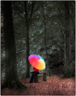 Forest Rainbow_Gerald Chamberlin