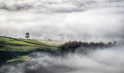 Ennerdale Mists