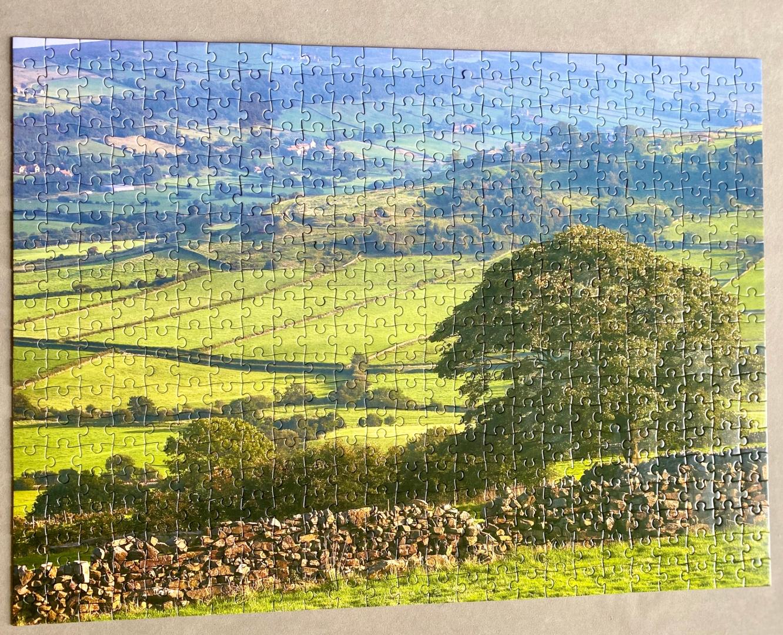 Jigsaw_Martin Riley