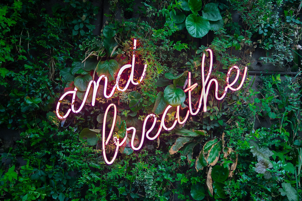The words 'and breathe' as a pink neon sign on a wall of green plants