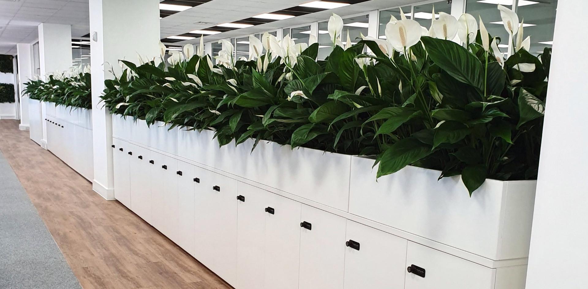 agile worksplace hot desking locker combination lock planters