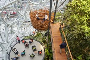 Edificios Institucionales: Esferas de Amazon