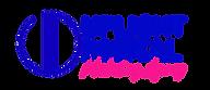 2020 AUGUST uplight digital logo design.