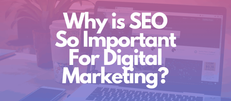 Why is SEO (Search Engine Optimization) So Important in Digital Marketing Your Business?