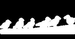 logo_DSAV_WHITE.PNG