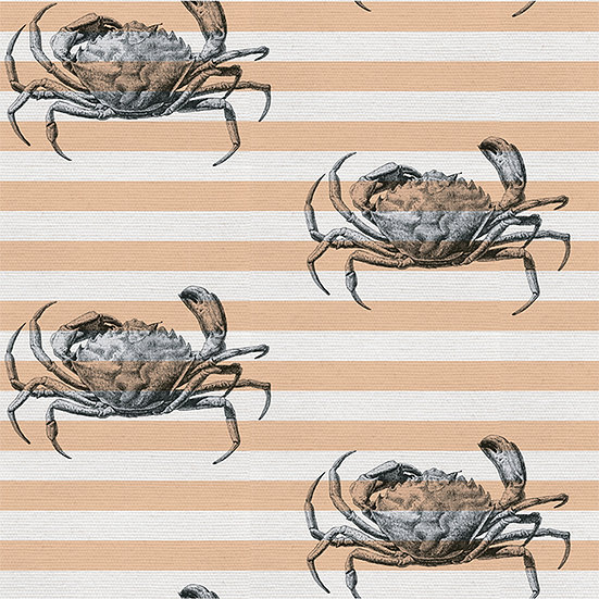 Cool Crab on Stipes. Colour: Sunset