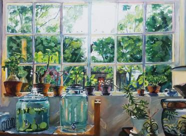 Jillians Window