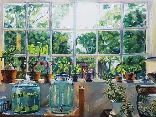 Jillian's Window