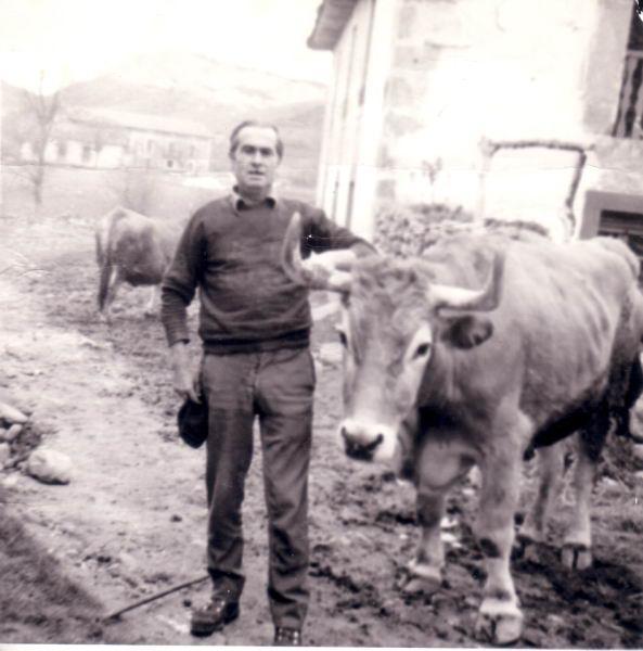 138.- 1974 aprox. - Juli con la vaca