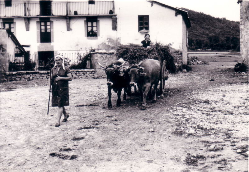 133.- 1973 aprox. - Presen y Marivi con las vacas