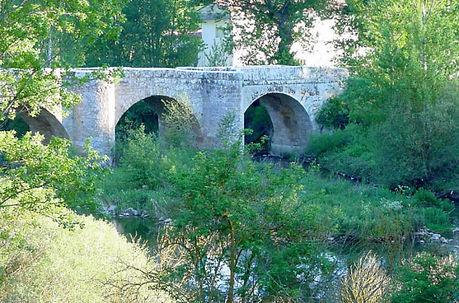 Puente piedra río Trueba