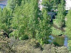 2007 04 12 El Puente de Pienza (7)