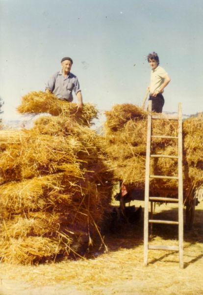 114.- 1971 - Gavillas