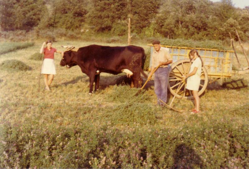 097.- 1970 - En El Terrero