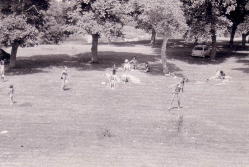 127.- 1973 - Nogalera