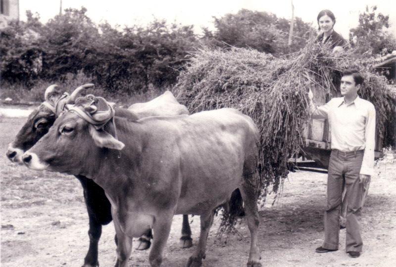 128.- 1973 aprox. - Alberto y Marivi con las vacas