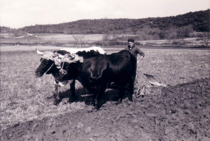 092.- 1970 - Braban en la Serna
