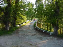 2007 04 12 El Puente de Pienza (4)